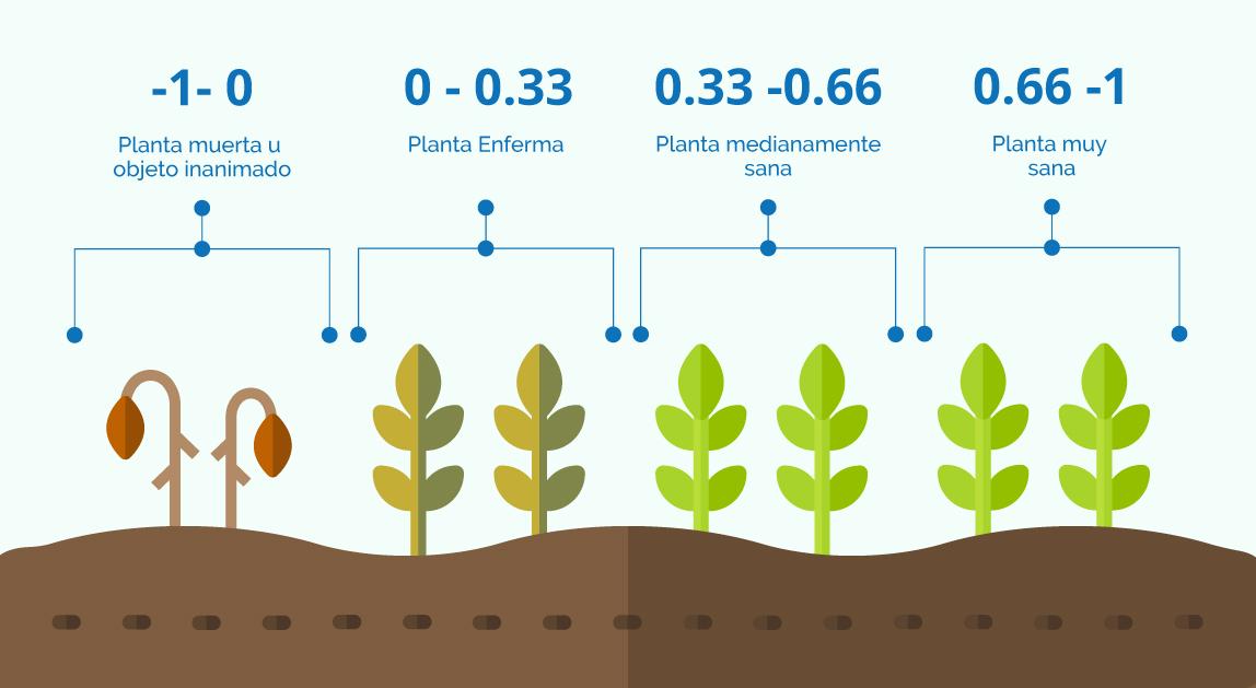 valores del NDVI según el estado del cultivo